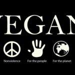 Why I went vegan~ My Story