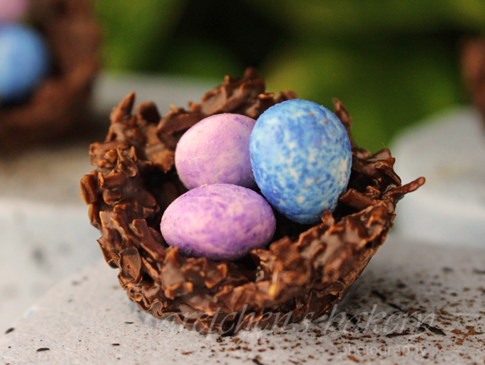 Chocolate Coconut Nest for Easter Cake