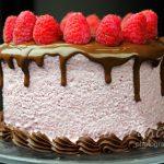 Vegan Raspberry Mousse Cake
