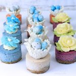 Miniature Vegan Cheesecakes ~ Spring Assortment
