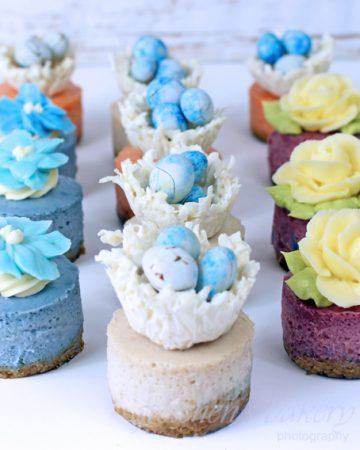 Miniature Vegan Cheesecakes ~ Spring Assortment