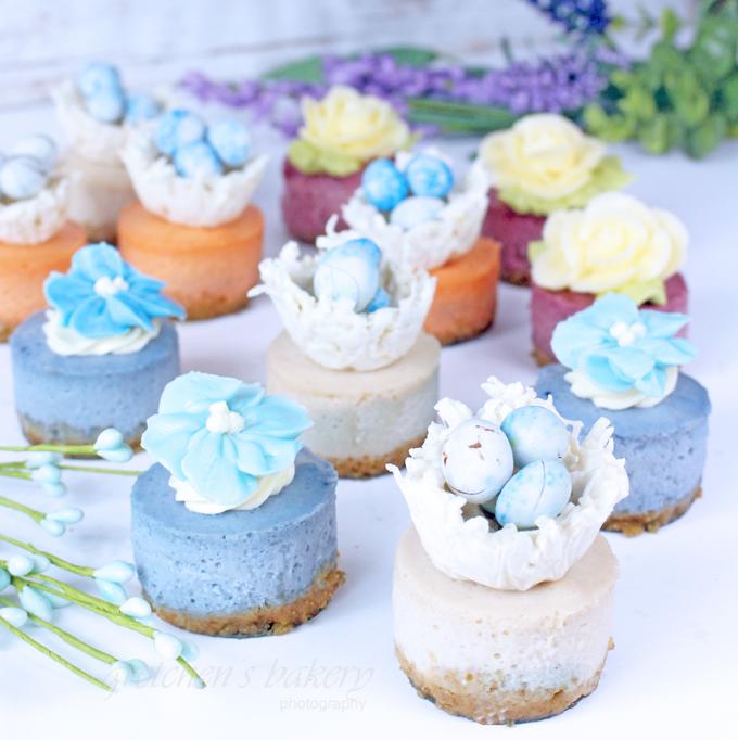 Miniature Cheesecakes ~ Spring Assortment